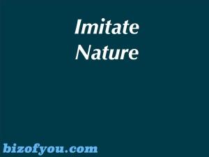 imitate nature